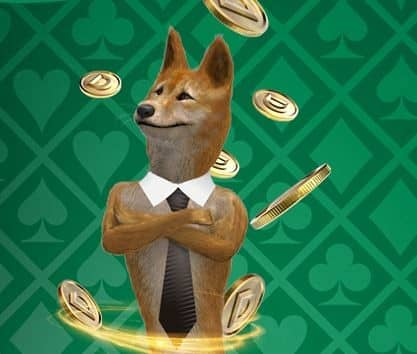 mascotte casino dingo